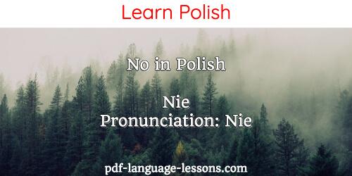 say no in polish