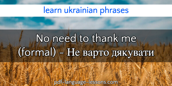 You're Welcome in Ukrainian(2)