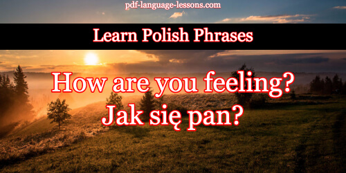 Say how are you in polish