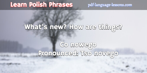 What Is How Are You In Polish