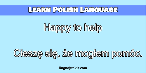 you're welcome in polish