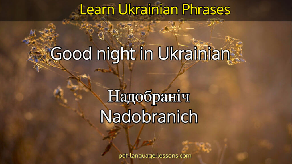 say bye in ukrainian