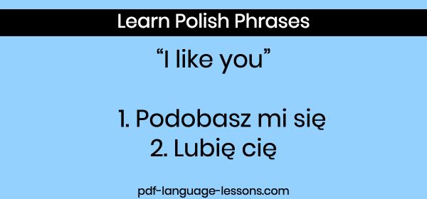 i love you in polish