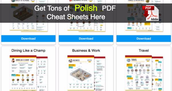 polish pdf lessons