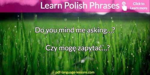 useful polish phrases