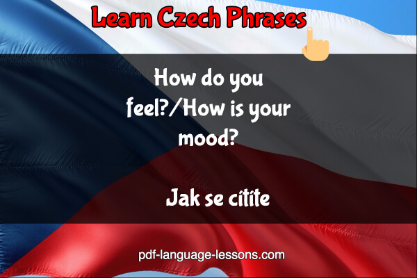 how are you in czech