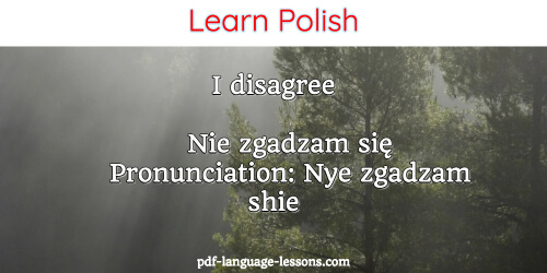 say no in polish