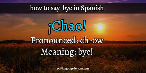 say bye in spanish