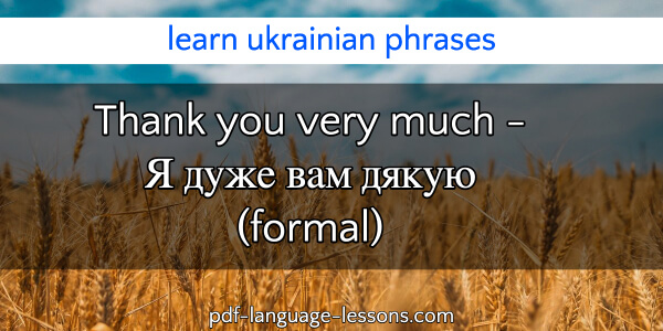thank you in ukrainian